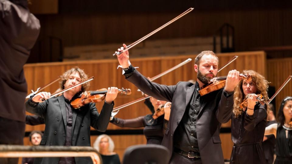 Violinists standing
