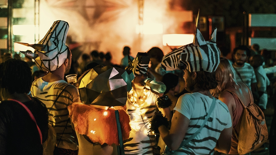 Festival goers dressed as zebras in front of brightly lit music stage